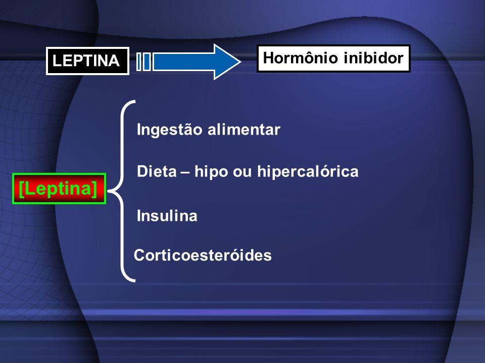 [Leptina] Hormônio inibidor LEPTINA Ingestão alimentar